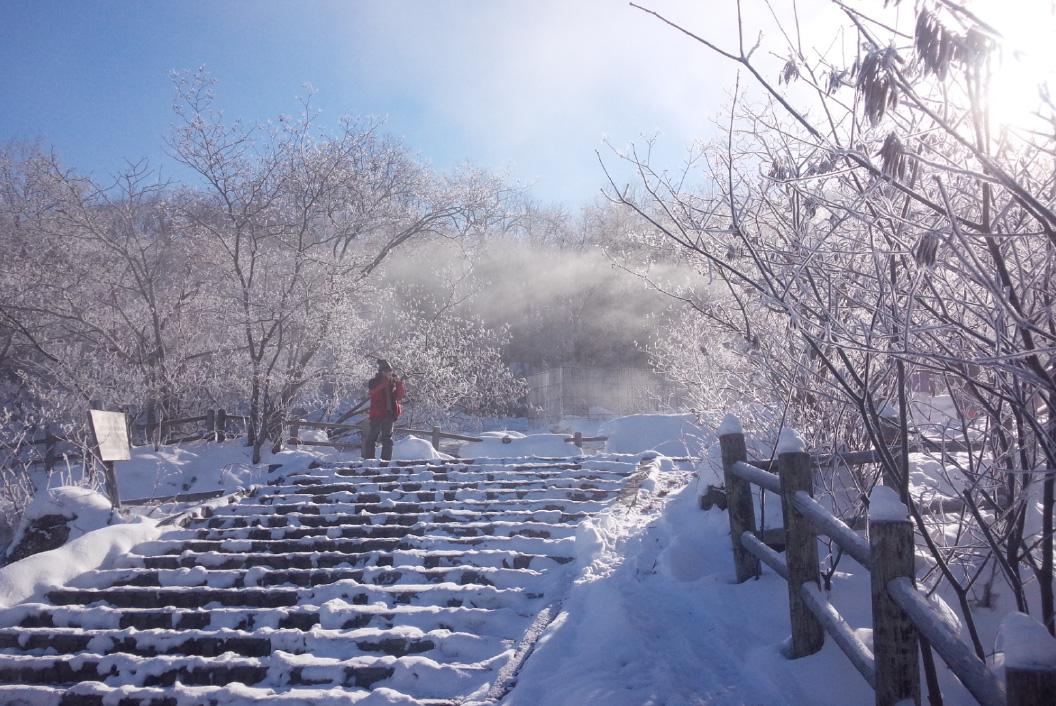 体験アクティビティ 「光の森」「阿寒川」ウォーキング