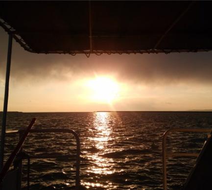日落周遊觀光船