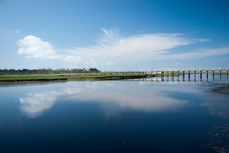 野鳥が最も多い「奇跡の島」、春国岱(しゅんくにたい)が最大の聖地。